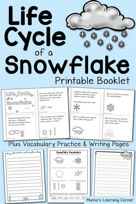 life cycle   snowflake booklet homeschool science