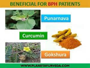 BPH enlarged prostate gland ayurvedic treatment - YouTube  Prostate Diseases Enlarged prostate