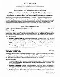 sales and marketing resume sample example With sample resume for sales and marketing position
