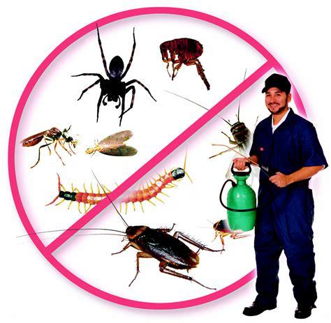 Pest Control Services Bangalore, Pest Control Company