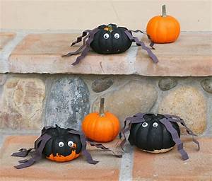 Mini, Pumpkin, Spiders