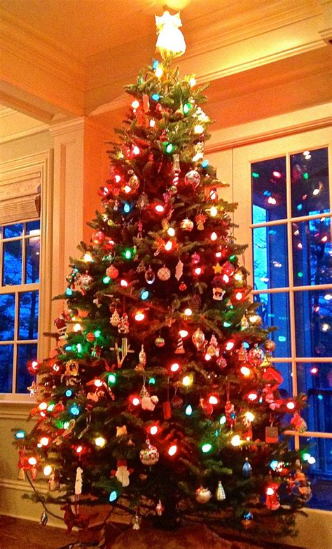 christmas  diwali winter holidays   world