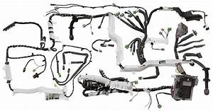 Motorsports Ecu Wiring Harness Construction  Tons Of Tips
