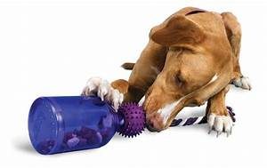 where to buy best chew toys for dogs petswithloveus With best dog toys for dogs that chew