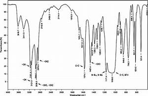 Study of a novel gel electrolyte based on poly-(methoxy ...