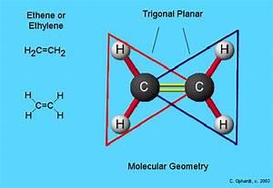 Alkene Molecule Geometry