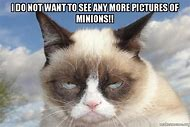 Grumpy Cat Meme Working