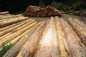 Kubikmeter Berechnen Holz : kubikmeter holz granitsteine schneiden ~ Yasmunasinghe.com Haus und Dekorationen