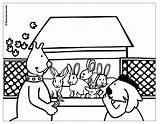 Rabbit Coloring Hutch Peter Uptoten Pages Boowa Kwala Games Popular sketch template