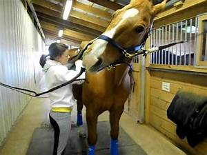 How To Tack Up A Horse