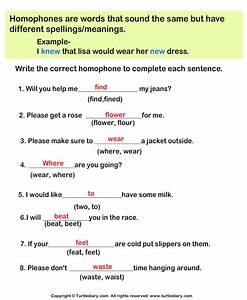 Write The Correct Homophone In Each Sentence Worksheet