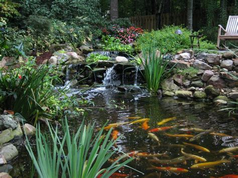 landscaping pond bamboo landscapes koi ponds landscaping with waterfalls ponds koi fish fountains and more