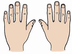 Hands cliparts