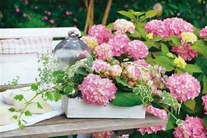 Deko Ideen Terrasse : deko ideen mit hortensien balkon terrasse hortensien deko ideen und sch ne deko ~ Orissabook.com Haus und Dekorationen