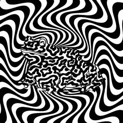 Frog Psychedelic