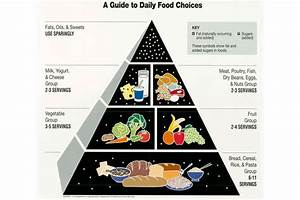 The Food Pyramid And Other Options