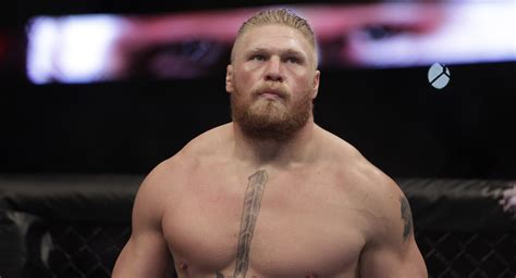 brock lesnar admits hes    ufc  remain