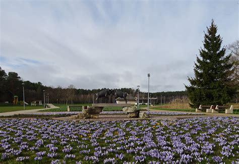 Pavasaris | Dolores park, Park, Travel