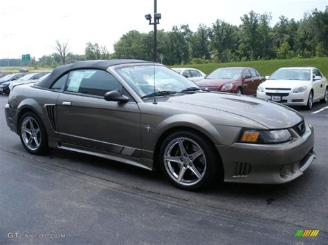 2001 Mineral Grey Metallic Ford Mustang Saleen S281