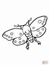 Coloring Moths Moth Insect Pages Stikbot Realistic Atlas Template Supercoloring sketch template
