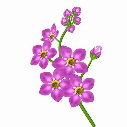 Transparent Flower Clipart Pink Flowers Yopriceville Var