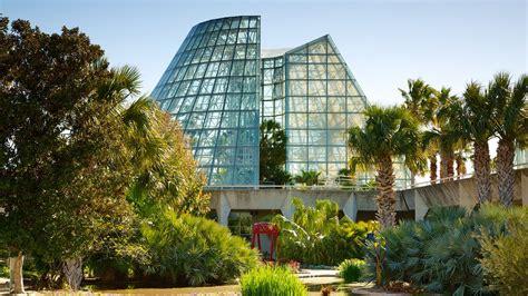 san antonio botanical gardens san antonio botanical gardens san antonio
