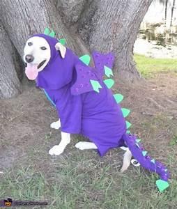 Homemade Dragon Dog Costume - Photo 2/5