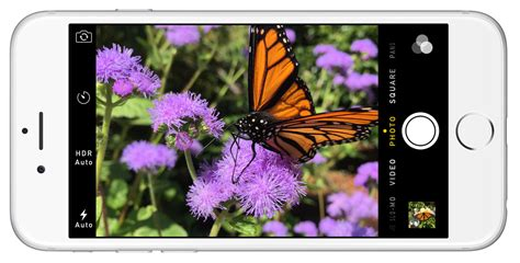 iphone 6s megapixels iphone 6s reportedly upgrading to 12 megapixels and