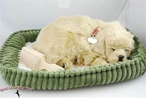 Golden Retriever Life Like Stuffed Animal Breathing Dog ...