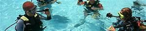 Padi Open Water Diver Exam