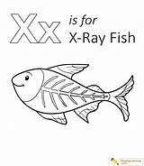 Fish Coloring Xray Pages Letter Ray Preschool Playinglearning Sheet Sheets Rays Crafts Radiation Worksheets Form Popular sketch template
