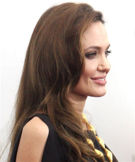 angelina jolie long straight casual hairstyle ash