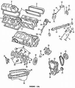 Dodge D250 Engine Timing Cover Gasket  Liter  Cylinder