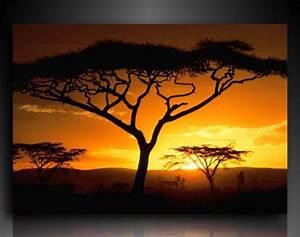 Bilder Natur Leinwand : leinwandbild afrika sonnenuntergang landschaften natur wandbilder bild 498 ~ Markanthonyermac.com Haus und Dekorationen