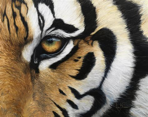 tiger eye tiger eye painting by lucie bilodeau