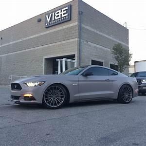 Tastefully modded 2015 Mustang 5.0 [1200x1200] : carporn