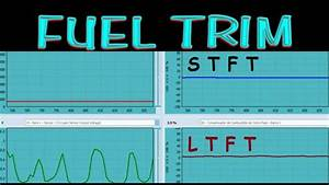 Introduccion Al Fuel Trim A Corto Y Largo Plazo  Version