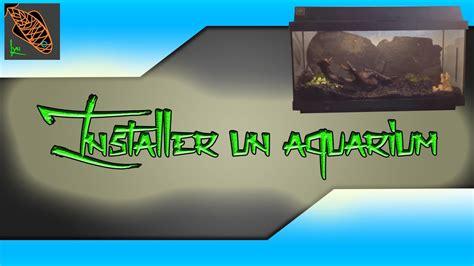 l installation d un aquarium pour d 233 butants lyn aquariophilie