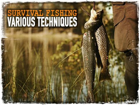 Backyard Trolines by Survival Fishing Various Techniques Preparing For Shtf