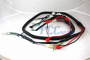 Chinese Gy6 250cc Wire Harness Wiring Assembly Scooter Moped Sunl Roketa Wh10