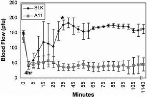 Effect Of Bifunctional A11