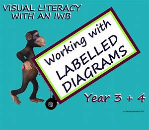 Visual Literacy  U2013 Working With Labelled Diagrams  U2013 Year 3