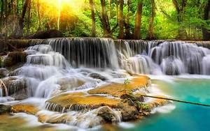 Cascade, Waterfall, With, Exotic, Tropical, Vegetation, Green, Trees, Sparkling, Water