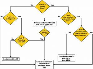 3 Flow Diagram Helping For The Assignment Of The