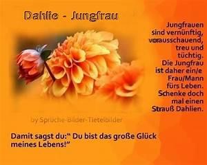 Steinbock Und Jungfrau : jungfrau dahlie sternzeichen pinterest jungfrauen ~ A.2002-acura-tl-radio.info Haus und Dekorationen