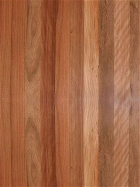 hardwood floors queensland brown species brush box photo hardwood floors queensland brisbane qld