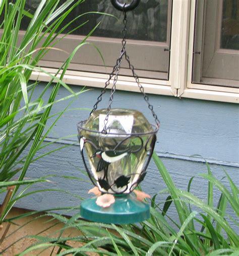 homemade hummingbird food mama s homestead