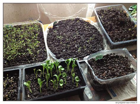 engrais pour tomates en pot transformer des gobelets en plastique en pot 224 semis 224 tr 232 s bas prix se preparer aux crises fr