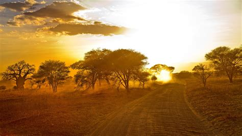 21+ Sunrise Wallpapers, Sunrays, Backgrounds, Images