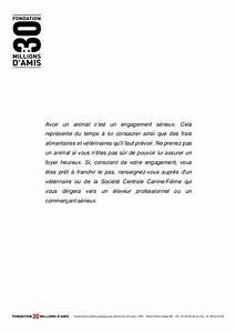 Lettre De Decharge Vente Automobile : dossier vente chiens ~ Medecine-chirurgie-esthetiques.com Avis de Voitures